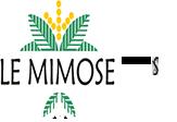 Hotel Le Mimose | San Teodoro
